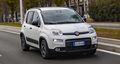 Fiat Panda MHEV